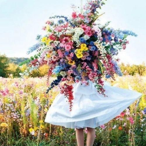 bloemen-gooik-elvira